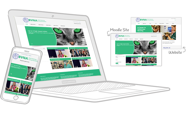 BVNA - Charity Moodle Brand Matching Theme