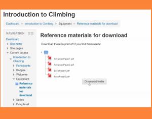 Bulk download files in a zipped folder