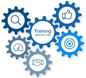 Why LMS training is so important